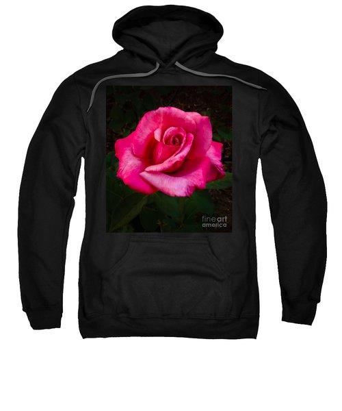 Perfect Rose Sweatshirt