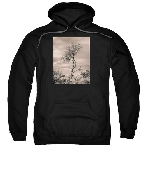 Perseverance Sweatshirt