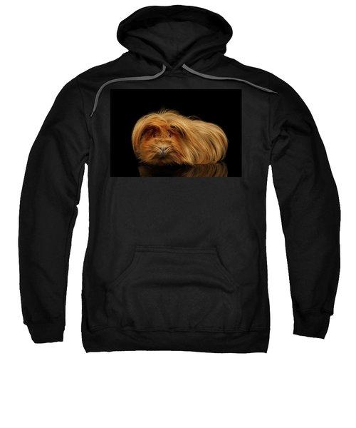 Trump Guinea  Sweatshirt