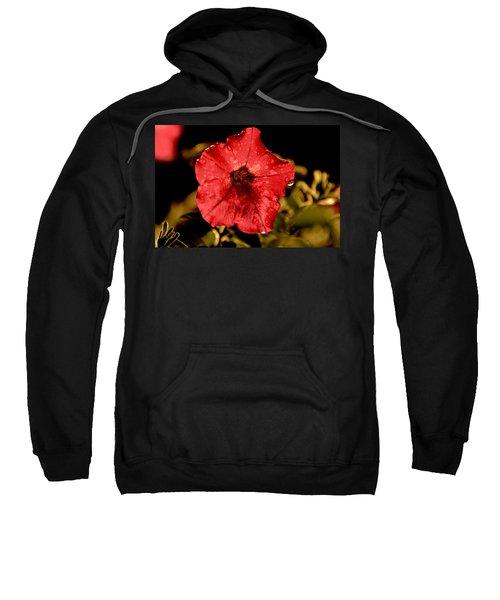Petunia After Rain Sweatshirt