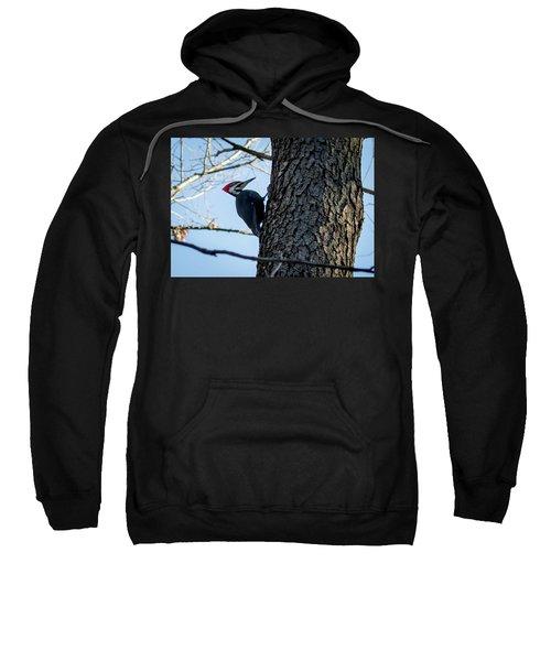 Pileated Woodpecker  Sweatshirt