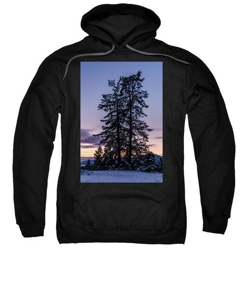 Pine Tree Silhouette    Sweatshirt