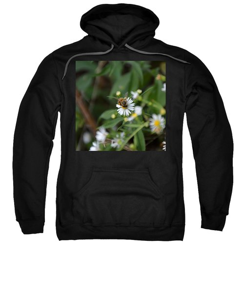 Pollinatin' Sweatshirt