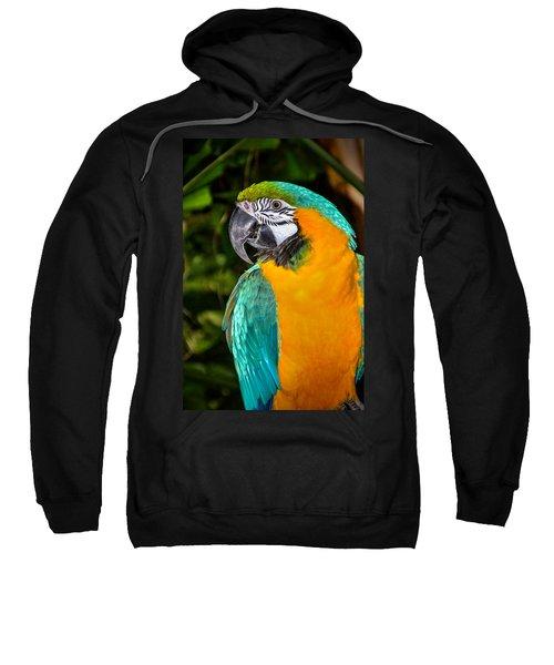 Polly II Sweatshirt