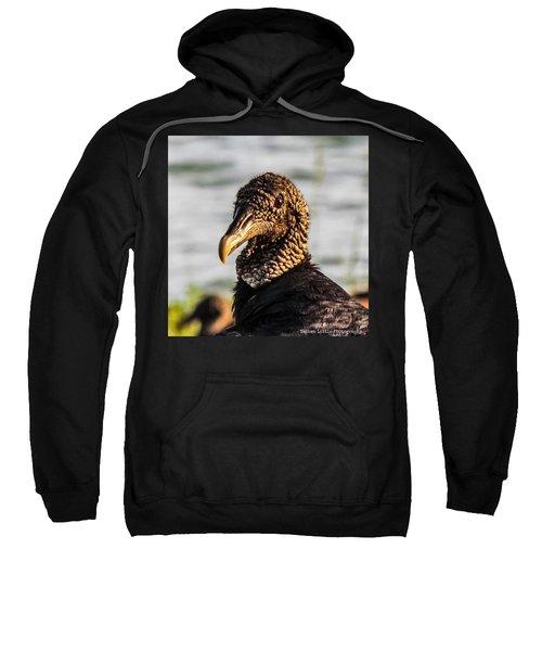Portrait Of A Vulture Sweatshirt