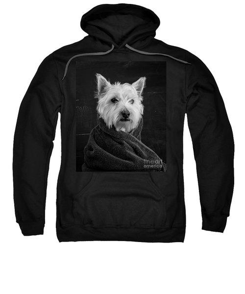 Portrait Of A Westie Dog Sweatshirt