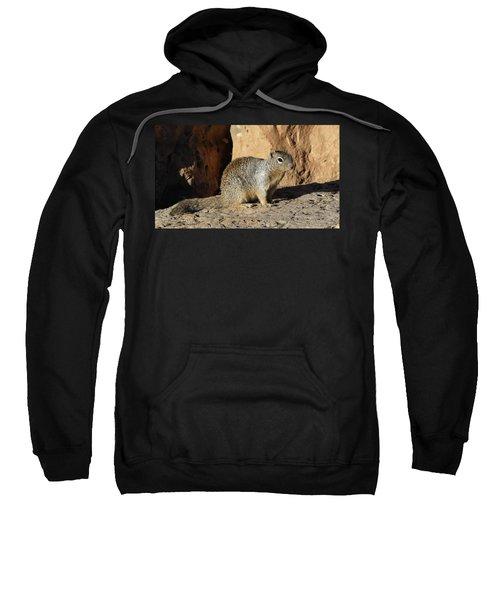 Posing Squirrel Sweatshirt