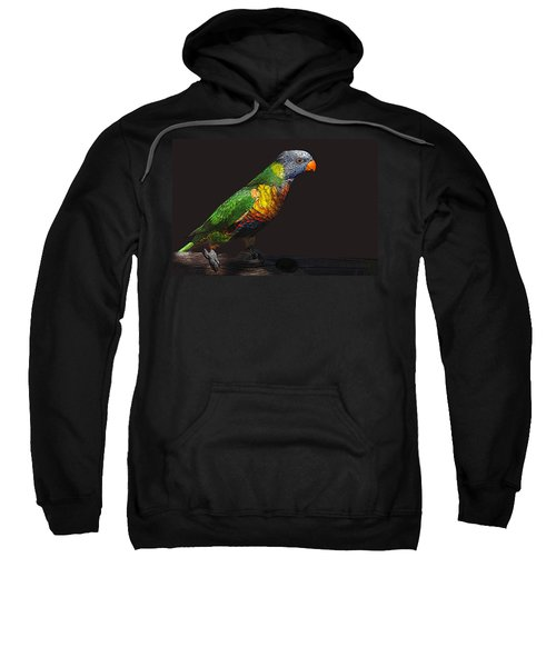 Pretty Bird Sweatshirt