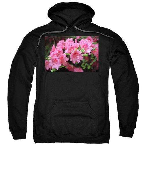 Pretty Pink Azalea Blossoms Sweatshirt