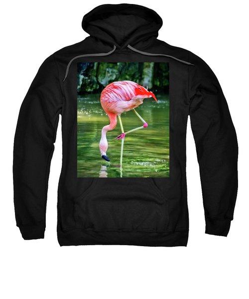 Pretty Pink Flamingo Sweatshirt