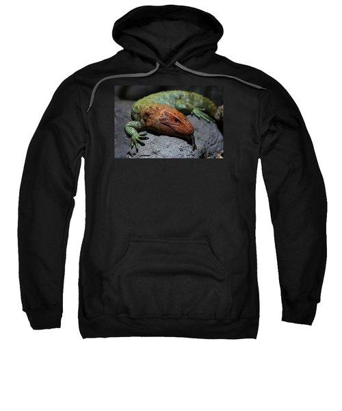 Professional Rock Taster Sweatshirt