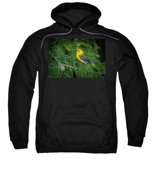 Prothonatory Warbler 9809 Sweatshirt