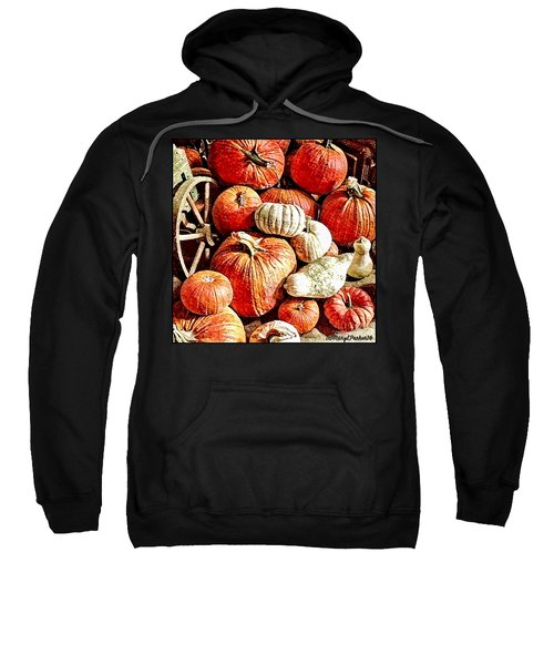 Pumpkins In The Barn Sweatshirt