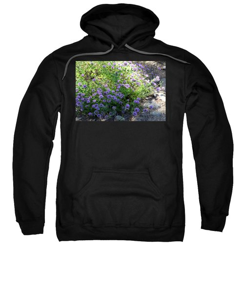 Purple Bachelor Button Flower Sweatshirt