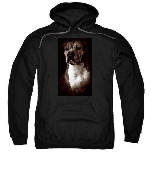 Quad Tone Pitbull Portrait Sweatshirt