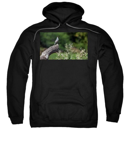 Quail Watching Sweatshirt