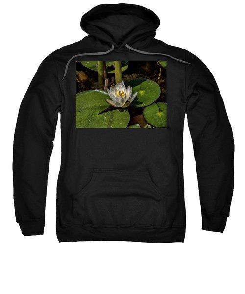 Radiant White Pond Lily  Sweatshirt