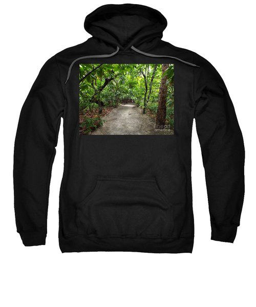 Rain Forest Road Sweatshirt
