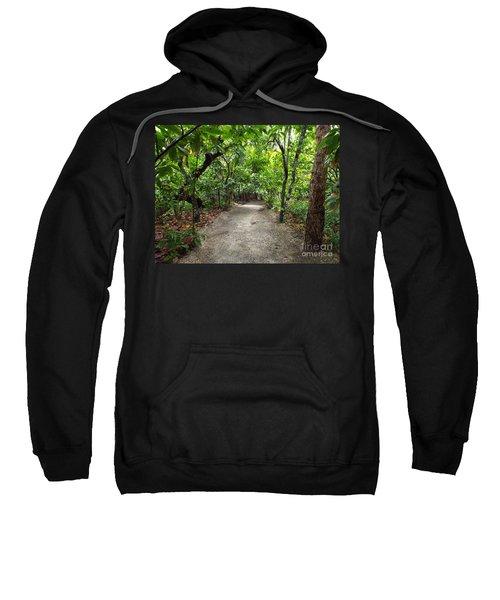Rain Forest Road Sweatshirt