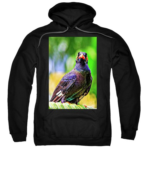 Rainbow Hill Mynah Sweatshirt