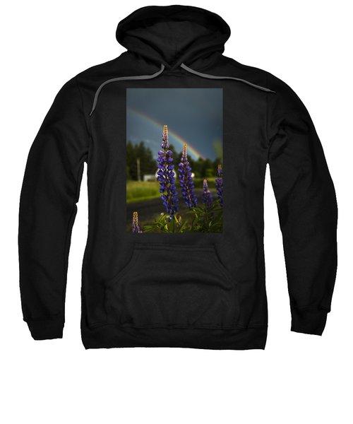 Rainbow Over Lupine  Sweatshirt