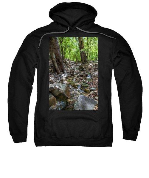 Ramsey Canyon Preserve Sweatshirt