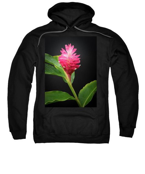 Red Ginger Sweatshirt