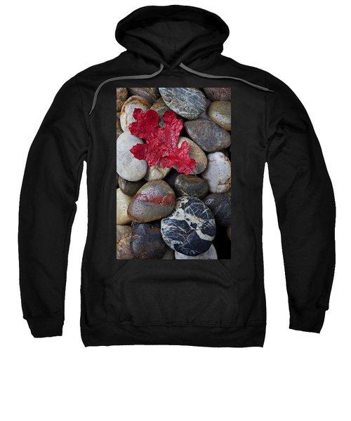 Red Leaf Wet Stones Sweatshirt