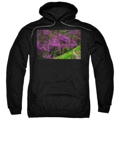 Redbud And Path Sweatshirt