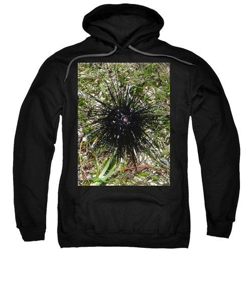 Reef Life - Sea Urchin 2 Sweatshirt