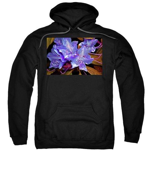 Rhododendron Glory 6 Sweatshirt