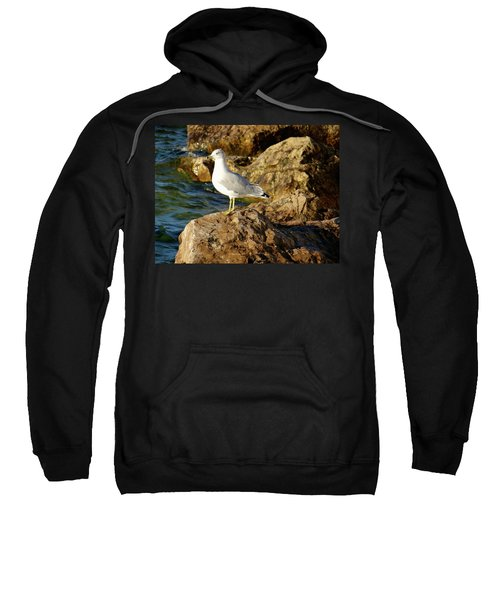 Rocky Waters Sweatshirt