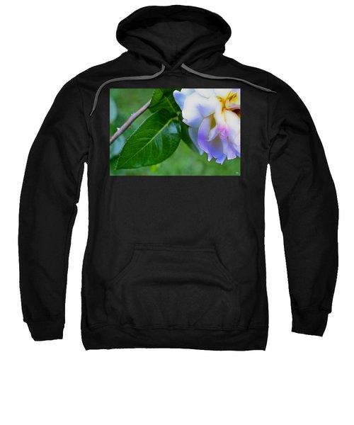 Rose Pedals Sweatshirt