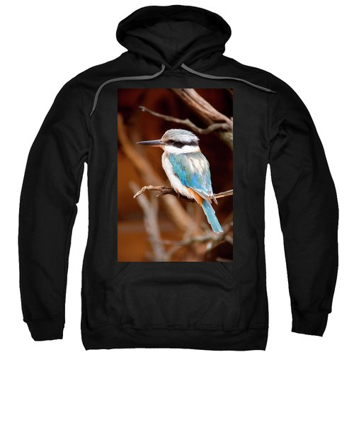 Sacred Kingfisher Sweatshirt