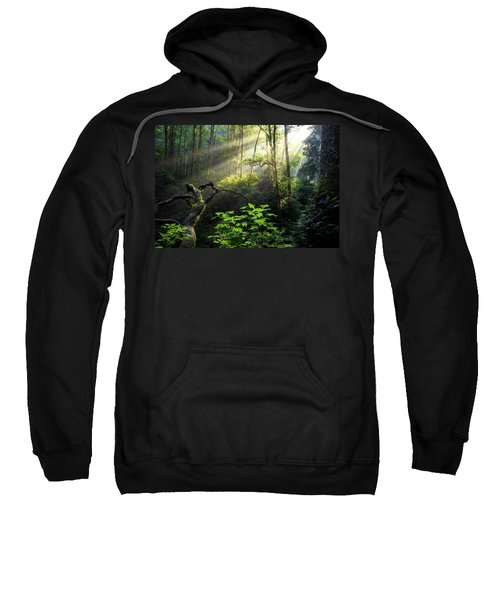 Sacred Light Sweatshirt