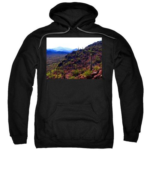 Saguaro National Park Winter 2010 Sweatshirt