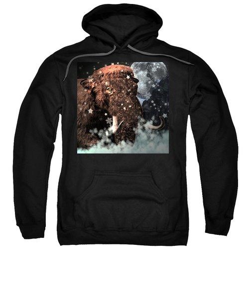Secrets Of Time Sweatshirt
