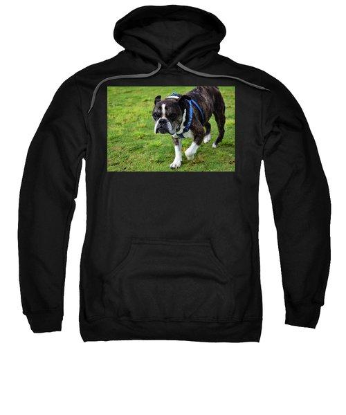 Leroy The Senior Bulldog Sweatshirt