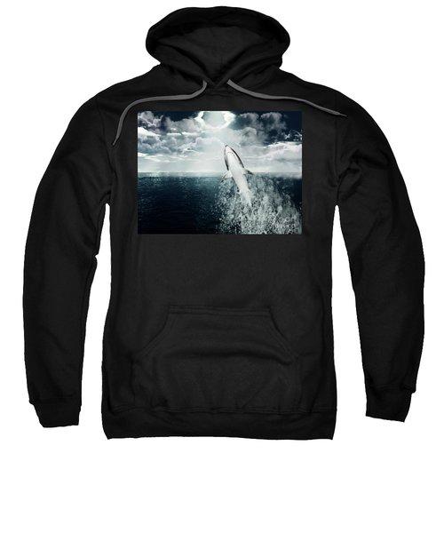 Shark Watch Sweatshirt