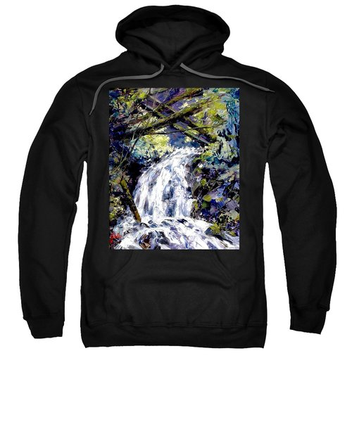 Shepherds Dell Falls Coumbia Gorge Or Sweatshirt