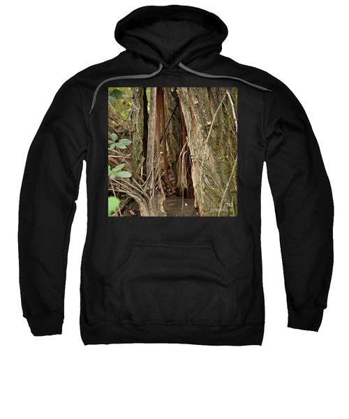 Shredded Tree Sweatshirt