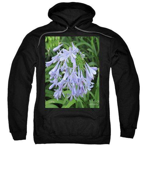 Silky Blue Blossoms Sweatshirt