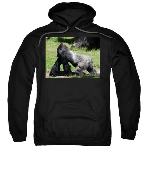 Silverback Gorilla At The San Francisco Zoo San Francisco California 5d3184 Sweatshirt