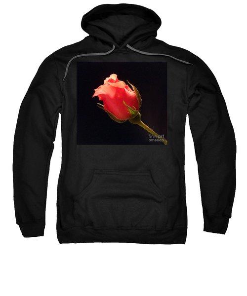 Single Pink Rose Bud Sweatshirt