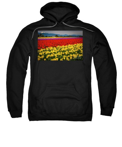 Skagit Valley Tulips  Sweatshirt