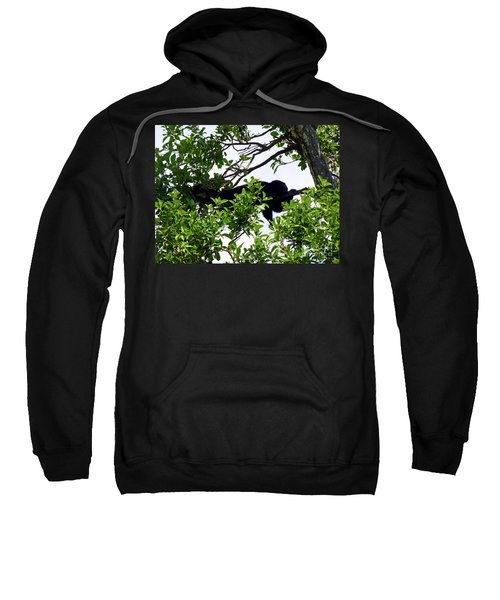 Sweatshirt featuring the photograph Sleeping Monkey by Francesca Mackenney