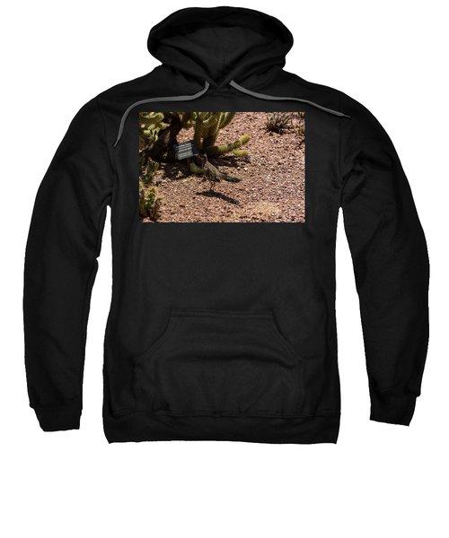 Smart Roadrunner Sweatshirt
