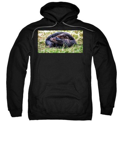 Smiler Sweatshirt
