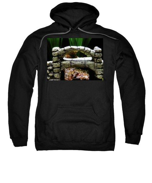 Snail Over A Bridge Sweatshirt