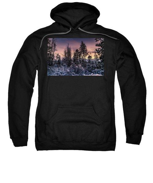 Snow Covered Pine Trees Sweatshirt